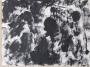 Landscape, 1977