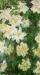 Claude-Monet-a76f596