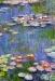 Claude-Monet-water-lilies-a4cb3
