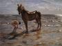 Valentin-Serov-bathing-a-horse