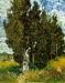 Vincent Van Gogh041