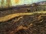 Vincent-van-Gogh-Enclosed-Field-with-Plowman-August-31-1889-St-Remy-Autumn